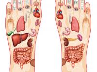 Thải độc các huyệt gan bàn chân